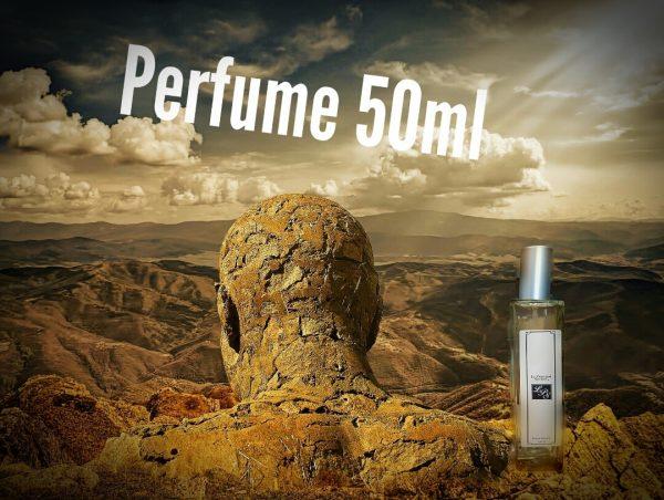 Perfumes hombre 50 ml Le parfum Secret