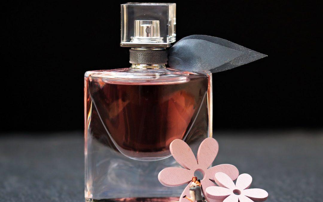 ⭐ Qué perfumes usan las famosas españolas 【 2018 】