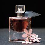 ⭐ Qué perfumes usan las famosas españolas 【2019】